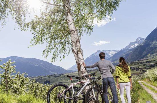 urlaub-im-meraner-land-mountainbike (1)