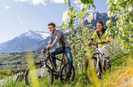 urlaub-im-meraner-land-mountainbike (4)